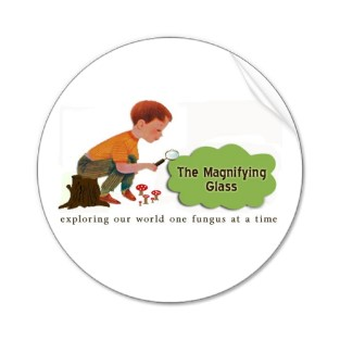 The_magnifying_glass_stickers-p217269652400996297tdcj_313