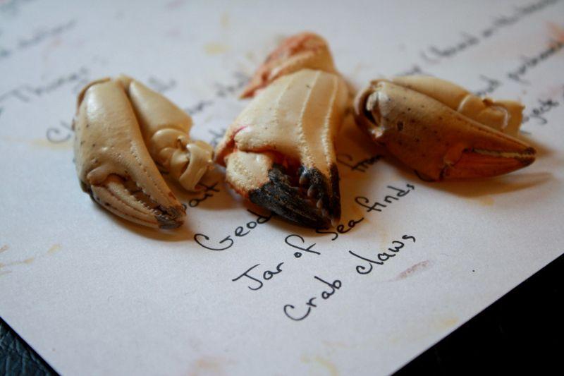 Crab clawsP