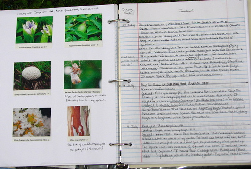 Nature journal 1 donna long