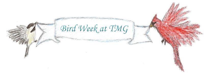 Bird Week at TMG