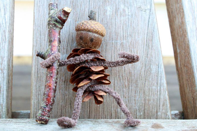 Z Pinecone man wood